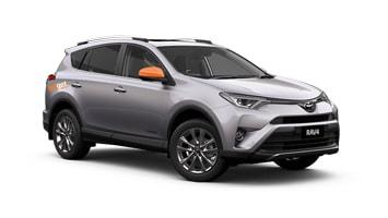 Sharma the RAV4